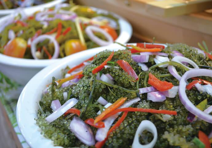 ローカロリーでミネラル豊富♪  体に優しい海藻サラダには、 プチプチ食感が楽しい海ブドウをたっぷり使用しています。