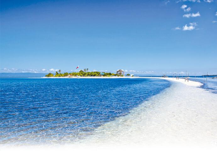 セブの神秘的な美しい海の世界へ冒険しに行こう!