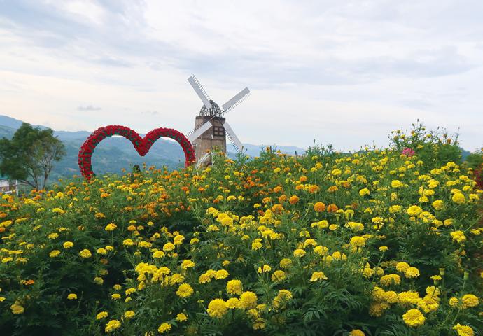 セブのロマンティックで美しい景色を垣間見る。ブサイの人気スポットを周ろう!